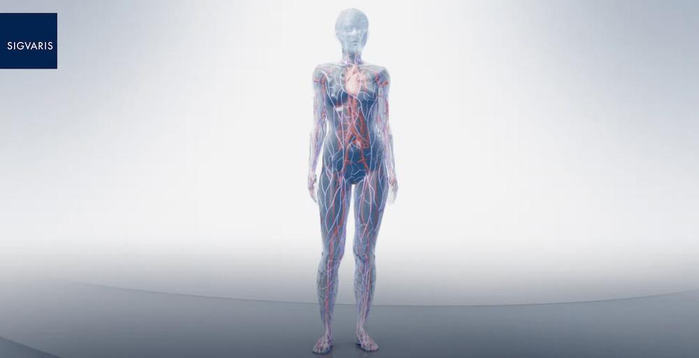 La compression veineuse, qu'est-ce que la maladie veineuse ?
